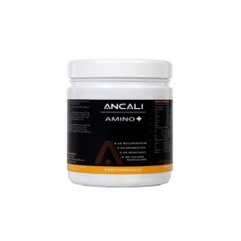 AMINO + - Ancali Nutrition