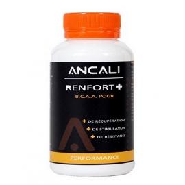Renfort + - Ancali Nutrition