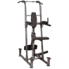 Poste Option Dip et pull-up pour home gym Fusion F600 | Body-Solid