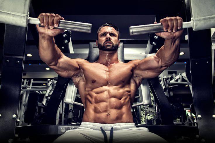 Programme d'entraînement pour la musculation