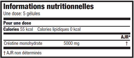 Informations nutritionnelles Mega Creatine de Scitec Nutrition