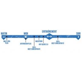 MMA Stack | Scitec Nutrition
