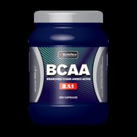 BCAA 8:1:1 - Nutritech