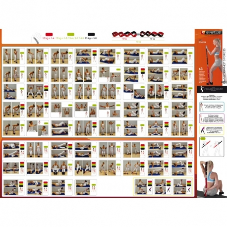 Poster Elastiband 3 forces 63 exercices - Sveltus