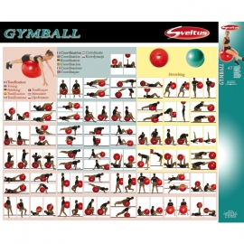 Méthode Gym Ball - Sveltus
