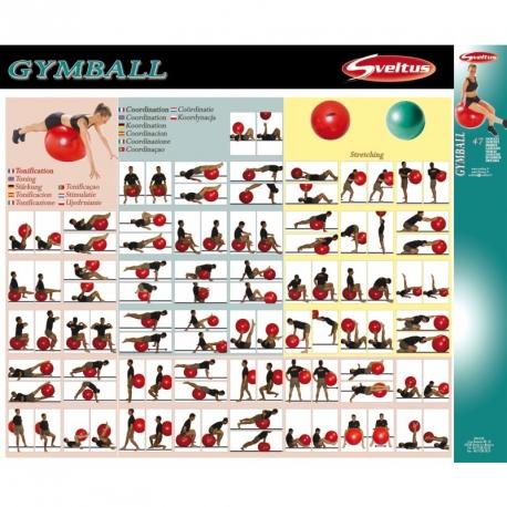 Méthode Gym Ball - Sveltus