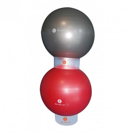Gymball Display   Sveltus