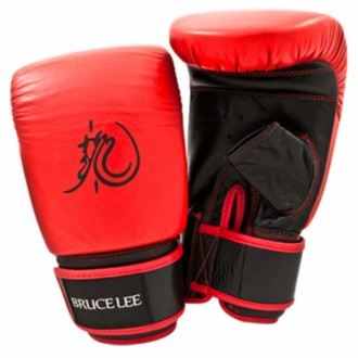 Bruce Lee Dragon Bag Glove
