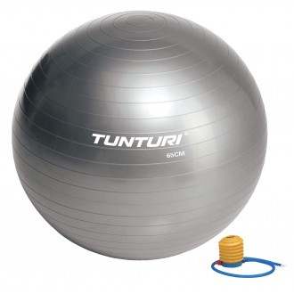 Gymball 65cm, Silver - Tunturi