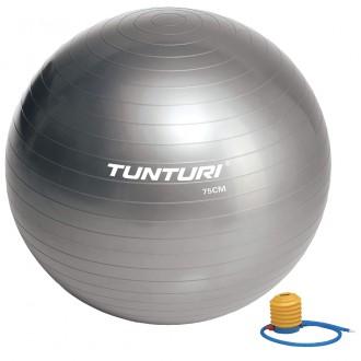 Gymball 75cm, Silver - Tunturi