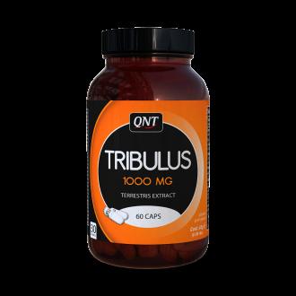 Tribulus - Qnt