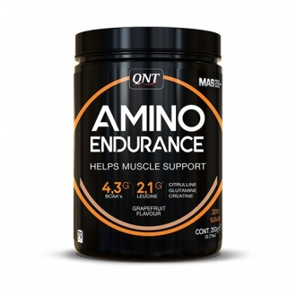 Amino Endurance (350g) - Qnt