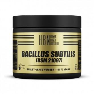 HBN - Bacillus Subtilis (60 Caps) - Peak