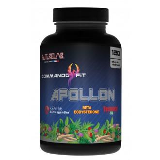 Apollon - Futurelab