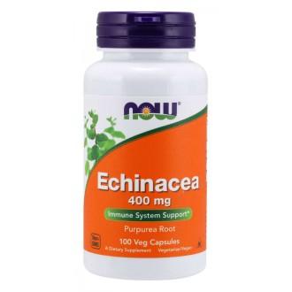 Echinacea 400mg (100 Caps) - Now Foods
