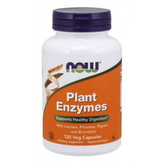 Plant Enzyme (120) - Now Foods