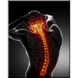 Etirements musculaires + prévention dos : abonnement 30 jours