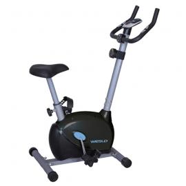 Vélo d'appartement Weslo Easy Fit 90