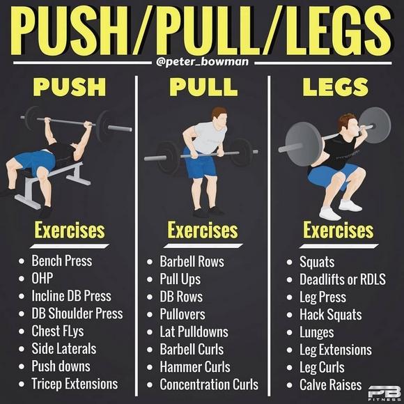 L'entraînement Push – Pull – Legs
